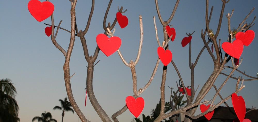 d1caeb7d2939 La plupart des gens pensent que le jour de la Saint Valentin est la « fête  des amoureux ». Il est également commun que les jeunes gens à l école  s échangent ...