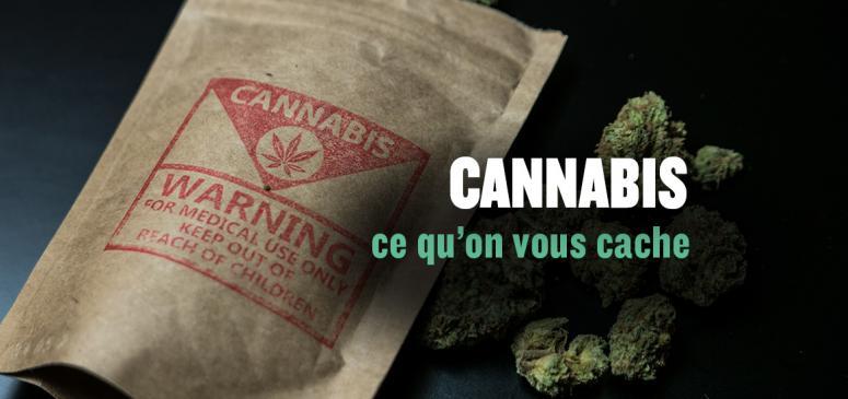 Cannabis: ce qu'on vous cache