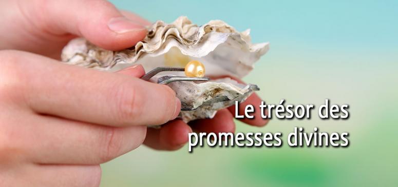 Front slider - Le trésor des promesses divines