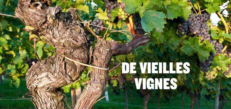 Front slider - De vieilles vignes
